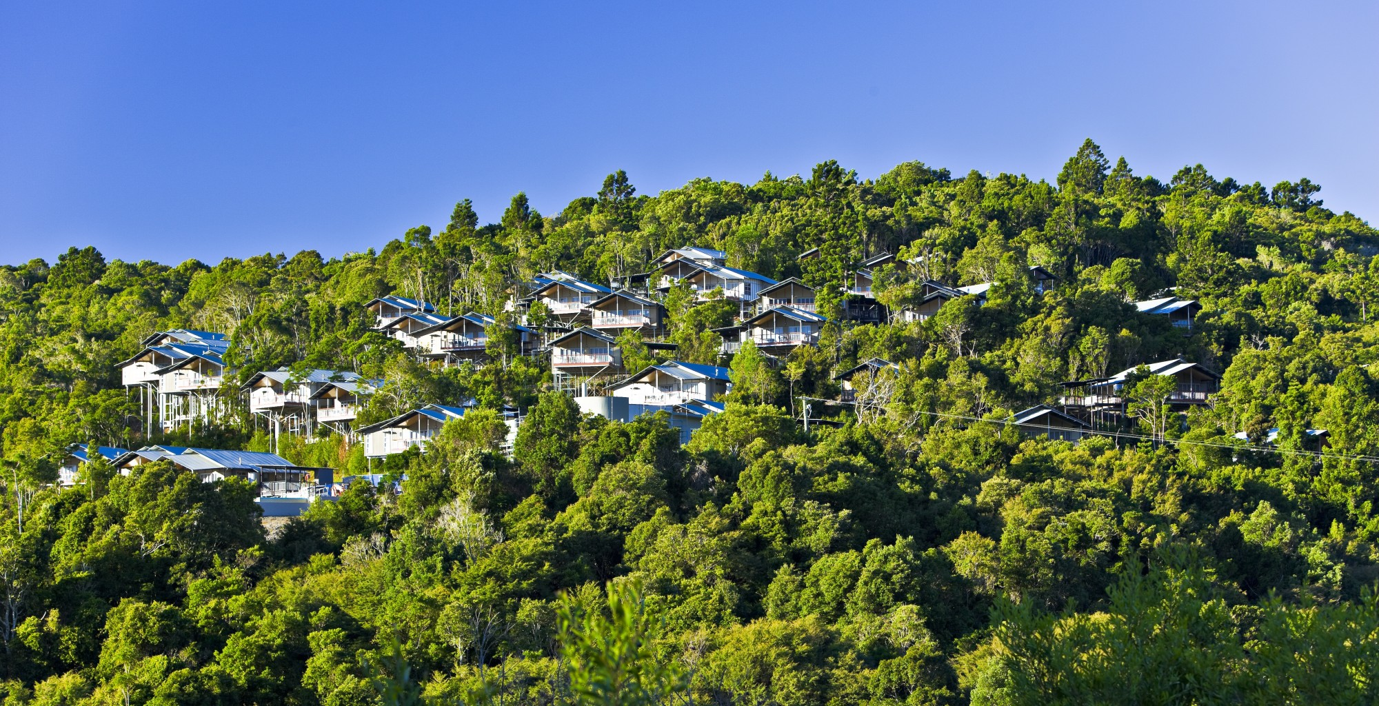 O'Reilly's Rainforest Retreat, Villas and Lost World Spa