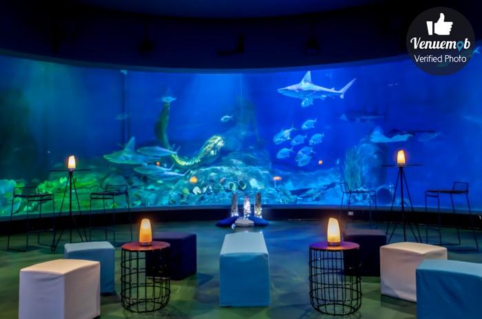 Antarctica Room Of The Melbourne Sea Life Aquarium